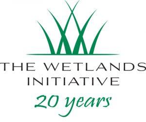 Logo--20th-Anniversary